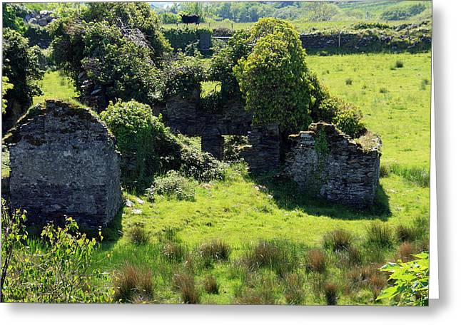 Stone House Greeting Cards - Birth Place Of The Liberator Greeting Card by Aidan Moran