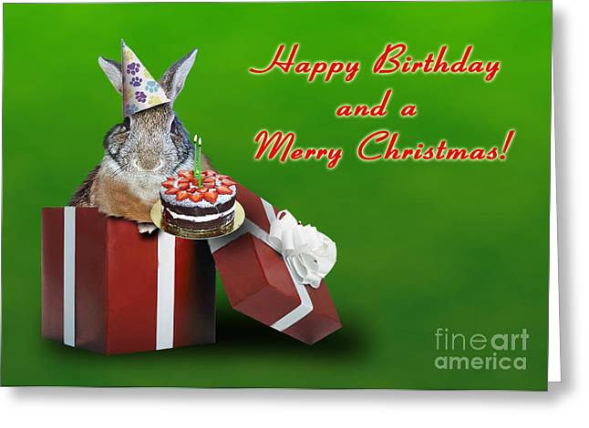 Wildlife Celebration Greeting Cards - Birthday and Christmas Bunny Rabbit Greeting Card by Jeanette K
