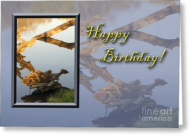 Wildlife Celebration Greeting Cards - Birthday Fish Greeting Card by Jeanette K