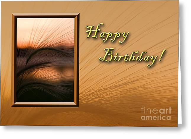 Wildlife Celebration Greeting Cards - Birthday Grass Sunset Greeting Card by Jeanette K