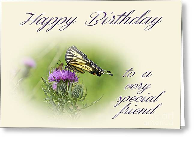 Mother Nature Greeting Cards - Birthday Greeting Card - Special Friend - Tiger Swallowtail Butterfly On Thistle Greeting Card by Mother Nature