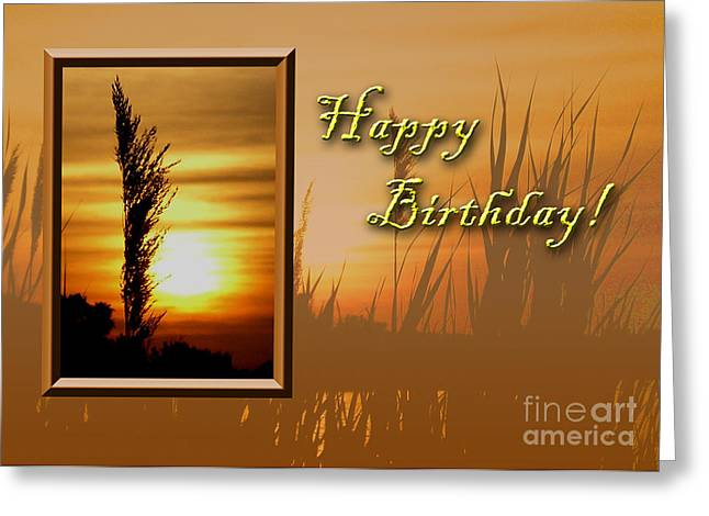 Wildlife Celebration Greeting Cards - Birthday Sunset Greeting Card by Jeanette K