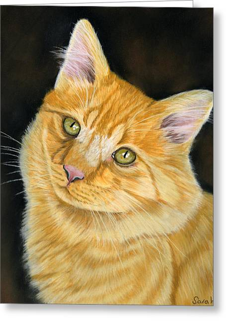 Cat Prints Pastels Greeting Cards - Biscuit Greeting Card by Sarah Dowson