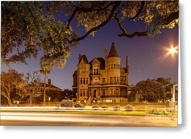 Nicholas Greeting Cards - Bishops Palace Greshams Castle - Galveston Texas Greeting Card by Silvio Ligutti