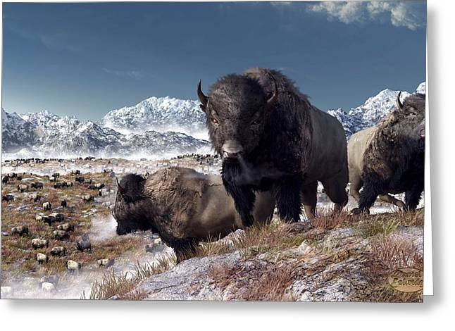 Grazing Snow Greeting Cards - Bison Herd in Winter Greeting Card by Daniel Eskridge