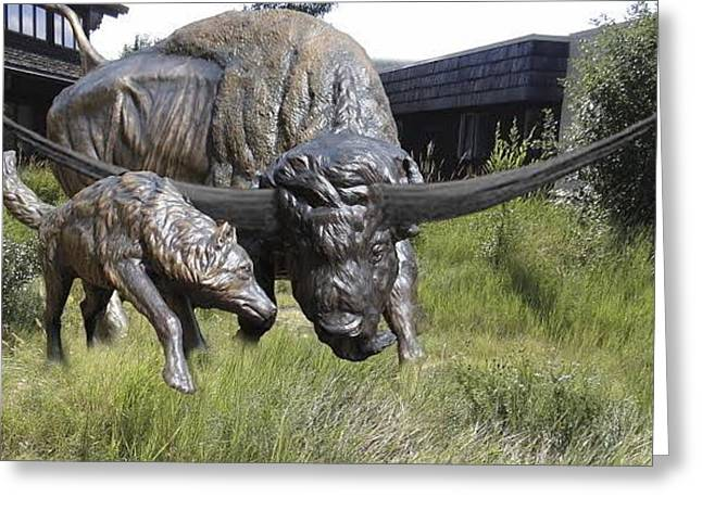 Bison Sculptures Greeting Cards - Bison latifrons and Dire Wolf Greeting Card by Peggy Detmers