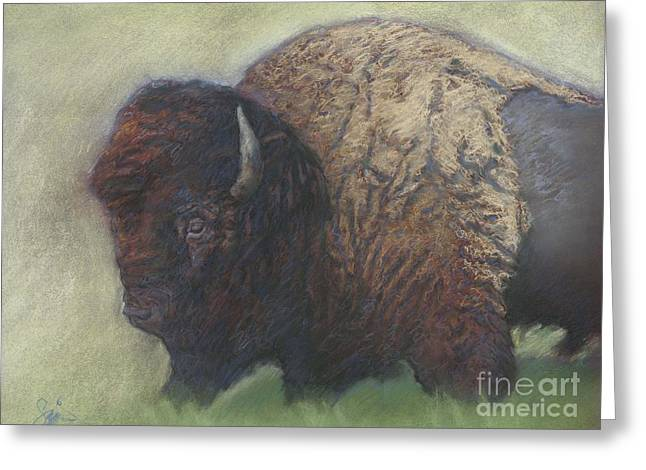Tatanka Greeting Cards - Bison Greeting Card by Suzie Majikol-Maier