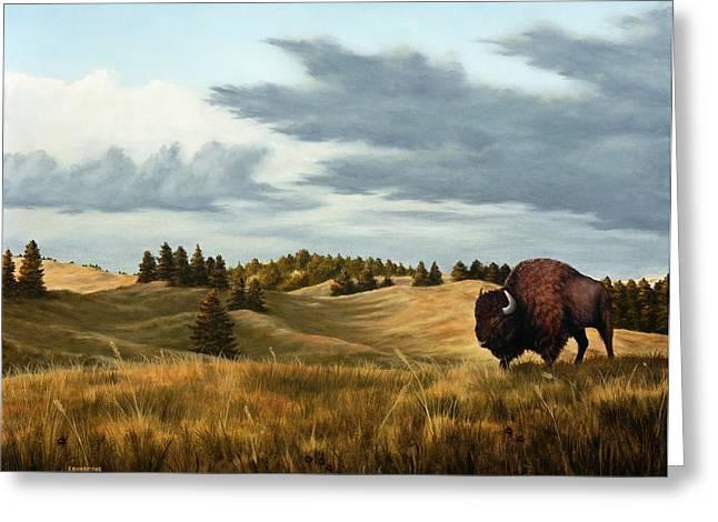 American Bison Greeting Cards - Bison  Wind Cave Park  South Dakota Greeting Card by Rick Bainbridge