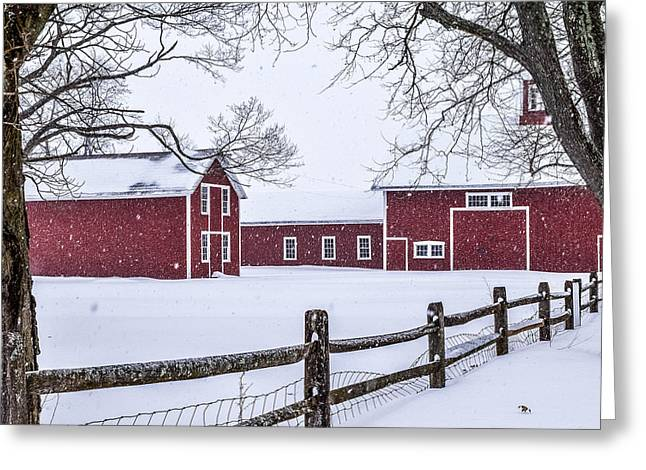 Snowy Day Greeting Cards - Bissell Ferry Landmark Greeting Card by Libby  Lord