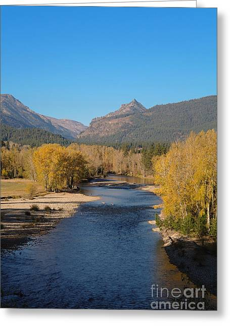 Montana Artist Greeting Cards - Bitterroot River Fall Greeting Card by Joseph J Stevens