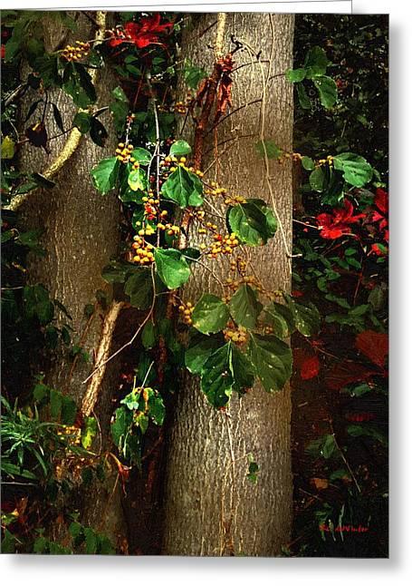 Bittersweet Digital Greeting Cards - Bittersweet Autumn Greeting Card by RC DeWinter