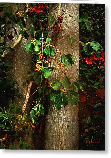 Bittersweet Autumn Greeting Card by RC deWinter