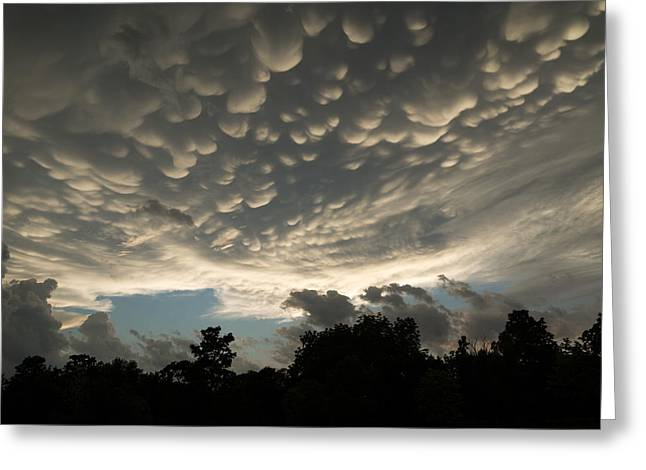 Turbulent Skies Greeting Cards - Bizarre Mammatus Clouds in Toronto Greeting Card by Georgia Mizuleva