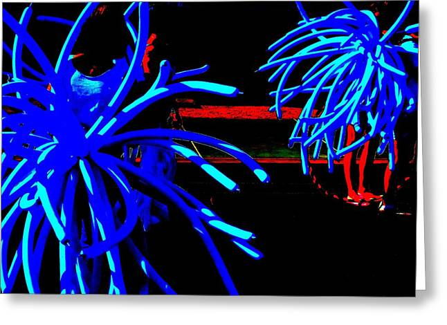 Noodles Greeting Cards - Black and Blues Greeting Card by Randall Weidner