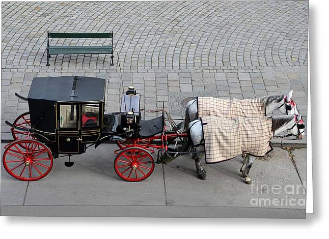 Buggy Whip Greeting Cards - Black and red horse carriage - Vienna Austria  Greeting Card by Imran Ahmed