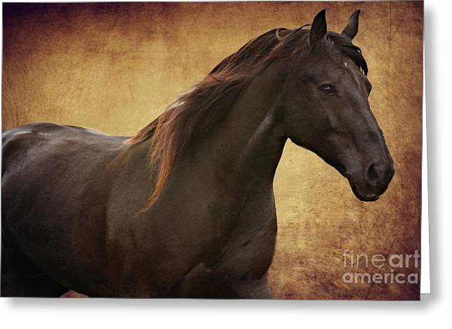 Cheval Greeting Cards - Black and Umber Greeting Card by Lyndsey Warren