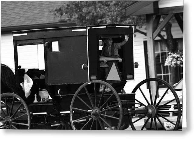 Black And White Amish Buggy Greeting Card by Dan Sproul