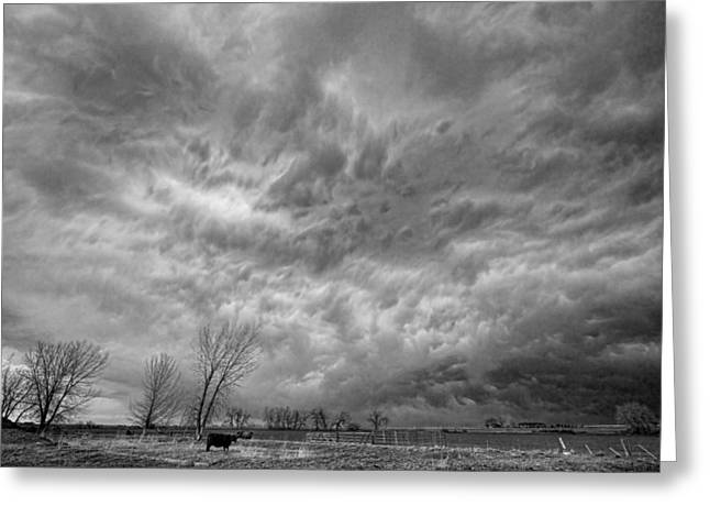 Storm Prints Greeting Cards - Black and White Angry Skies Greeting Card by James BO  Insogna