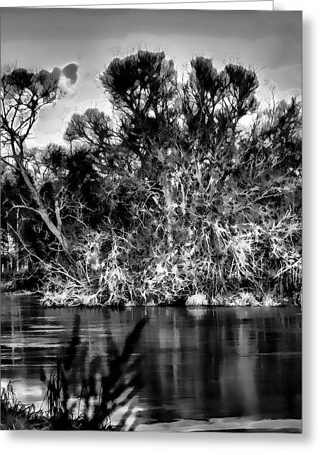 Trees Reflecting In Creek Greeting Cards - Black and white Artistic Big Tree Colored Coloured #orange By Sun On January 2 2015 Besides The Cree Greeting Card by Leif Sohlman