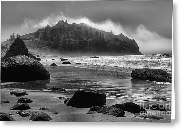 Foggy Beach Greeting Cards - Black And White At Trinidad Greeting Card by Adam Jewell