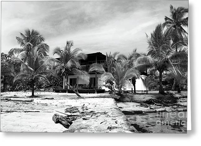 Old School House Greeting Cards - Black and White Beach House Greeting Card by John Rizzuto