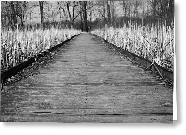 Weed Line Greeting Cards - Black And White Bridge Over Swamp Greeting Card by Dan Sproul