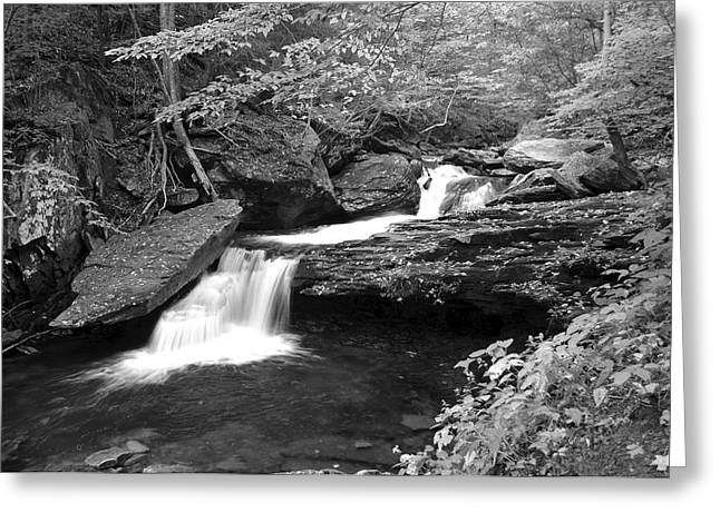 Black And White Cascade Greeting Card by Frozen in Time Fine Art Photography