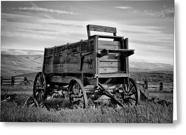 Horse And Cart Greeting Cards - Black And White Covered Wagon Greeting Card by Athena Mckinzie
