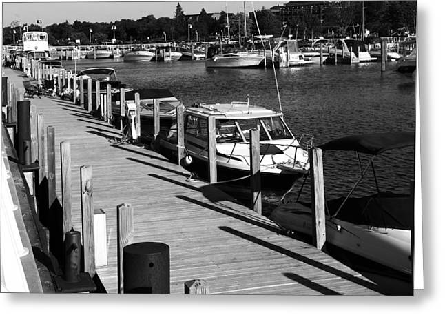 Docked Sailboat Greeting Cards - Black And White Dock Traverse City Michigan Greeting Card by Dan Sproul