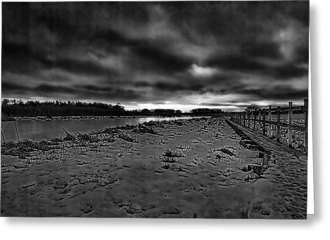 Reflection Of Sun In Clouds Greeting Cards - Black and white Early morning January 2015 Greeting Card by Leif Sohlman