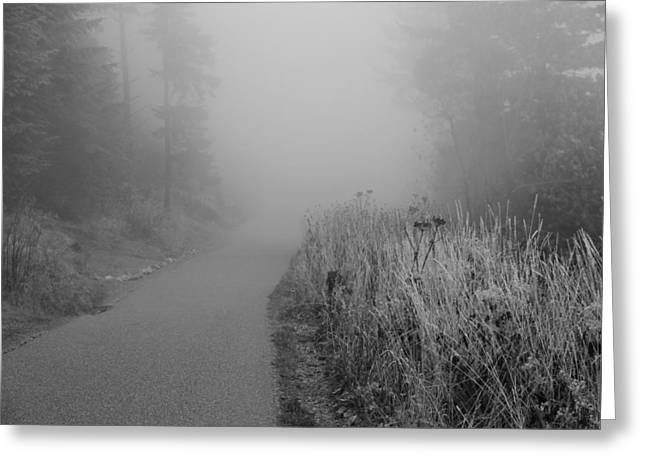 Great Mysteries Photographs Greeting Cards - Black And White Foggy Morning Walk Greeting Card by Dan Sproul