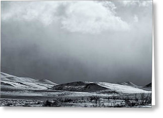 Winter Storm Greeting Cards - Black And White Image Of A Clearing Greeting Card by Robert Postma