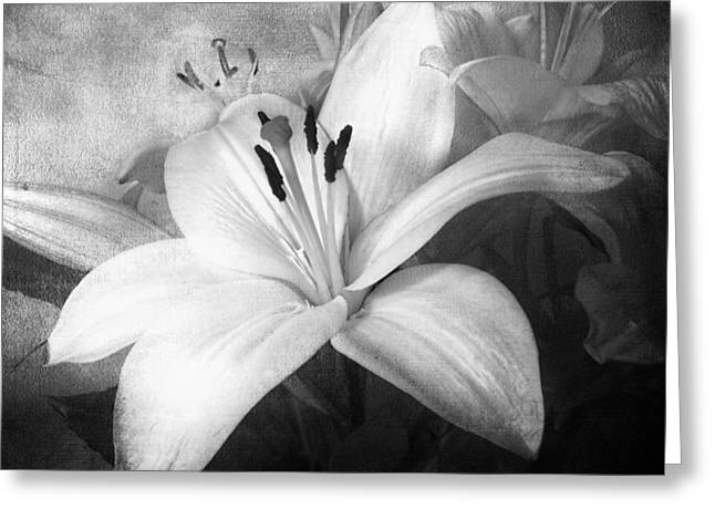Candidum Greeting Cards - Black and White Lilies for Linda Greeting Card by Melissa Bittinger