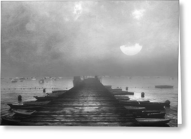 Zeana Romanovna Greeting Cards - Black and White Mystery- From The Moon To The Mist Greeting Card by Georgiana Romanovna
