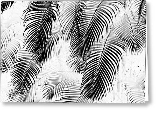 Hawai Greeting Cards - Black and White Palm Fronds Greeting Card by Karon Melillo DeVega