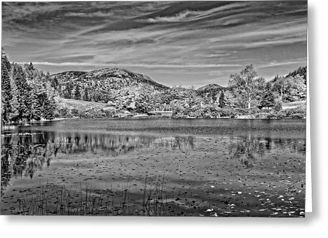 Desert Lake Greeting Cards - Black And White Photo Of Long Pond Acadia National Park Maine Greeting Card by Keith Webber Jr
