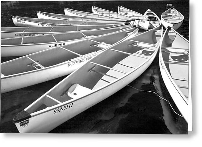 Lost Lake Greeting Cards - Black and White Photograph of a group of canoes tethered together in a circle Greeting Card by Randall Nyhof