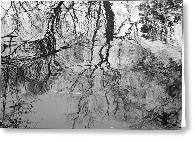 Trees Reflecting In Water Greeting Cards - Black and White Reflection on the Whight Oak River Greeting Card by Matthew Kay