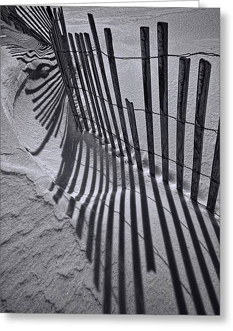 Snow Drifts Greeting Cards - Black and White Sand Fence during Winter on the Beach Greeting Card by Randall Nyhof