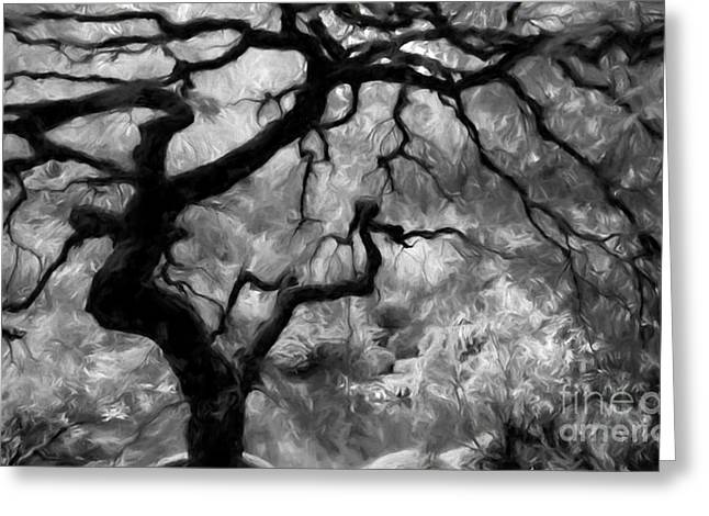 Tree Art Print Mixed Media Greeting Cards - Black and White Tree Art Greeting Card by Heinz G Mielke