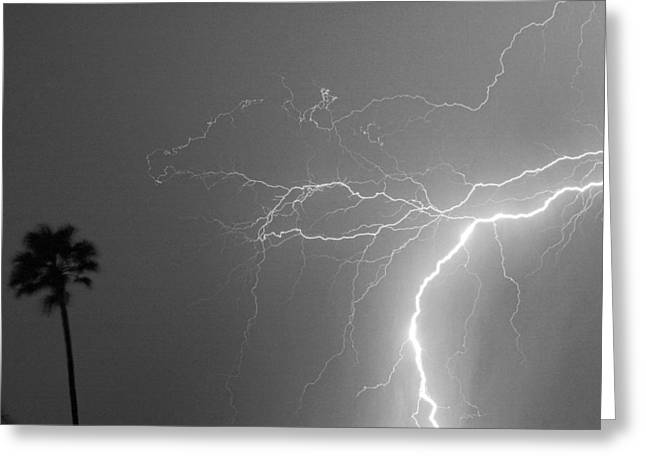 Storm Prints Photographs Greeting Cards - Black and White Tropical Thunderstorm Night  Greeting Card by James BO  Insogna