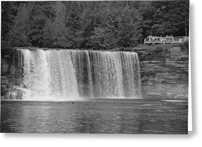The Great Lakes Greeting Cards - Black And White Upper Falls Greeting Card by Dan Sproul