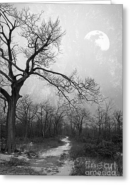 Winter Scenes Rural Scenes Greeting Cards - Black and White Winter Moonlight Blues Greeting Card by John Stephens