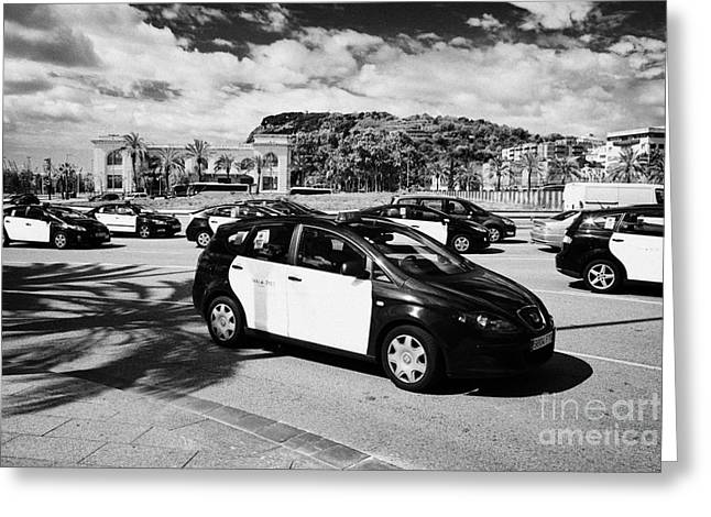 Catalunya Greeting Cards - Black And Yellow Taxi Cabs In Placa Drassanes Barcelona City Centre Catalonia Spain Greeting Card by Joe Fox