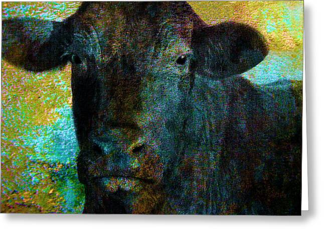 Farm Mixed Media Greeting Cards - Black Angus Greeting Card by Ann Powell
