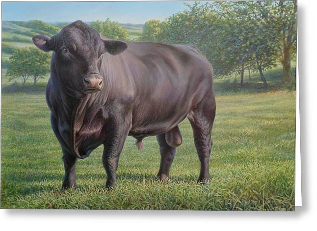 Steer Greeting Cards - Black Angus Bull 2 Greeting Card by Hans Droog