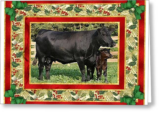 Black Angus Calf Greeting Cards - Black Angus Cow And Calf Blank Christmas Greeting Card Greeting Card by Olde Time  Mercantile