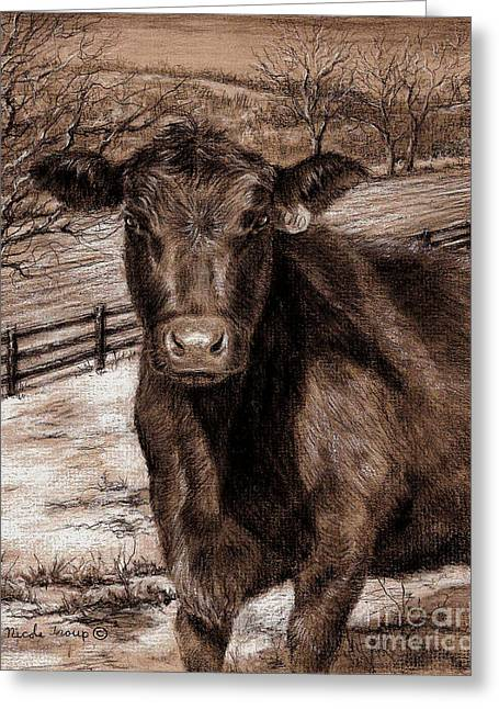Bare Trees Drawings Greeting Cards - Black Angus In the Field Greeting Card by Nicole Troup