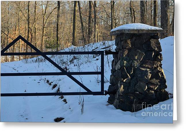 Stone Age Inc Digital Art Greeting Cards - Black Basalt pillars in the snow Greeting Card by The Stone Age