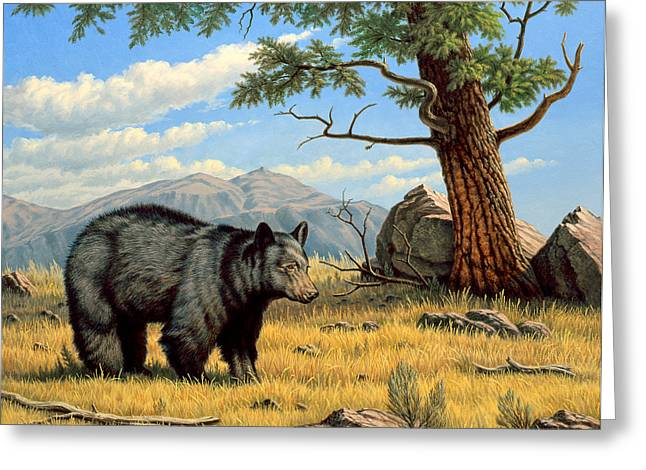 Black Bear Above Lamar Greeting Card by Paul Krapf